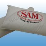 Standard Pillow #0600